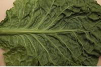 Photo Texture of Leaf Cabbage 0006