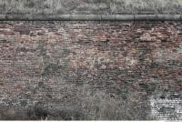 photo texture of wall brick overgrown 0004